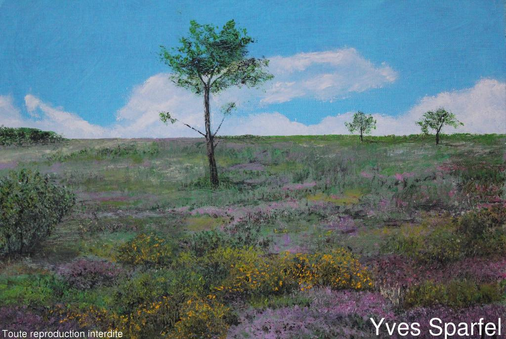 Tableau terre de bruy re galerie peintures yves sparfel - Terre de bruyere ...